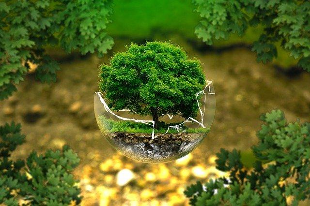 golarka do ubrań, golarka do swetrów, ekologia, eco friendly, przemysł tekstylny